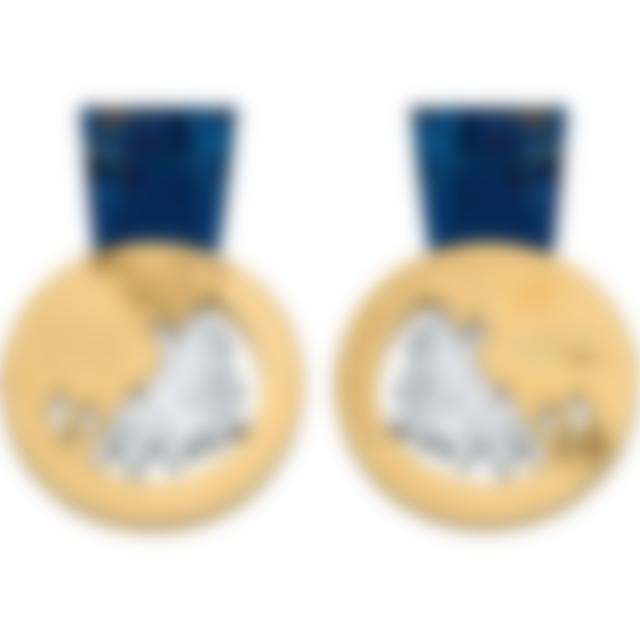 Sochi_2014_medal