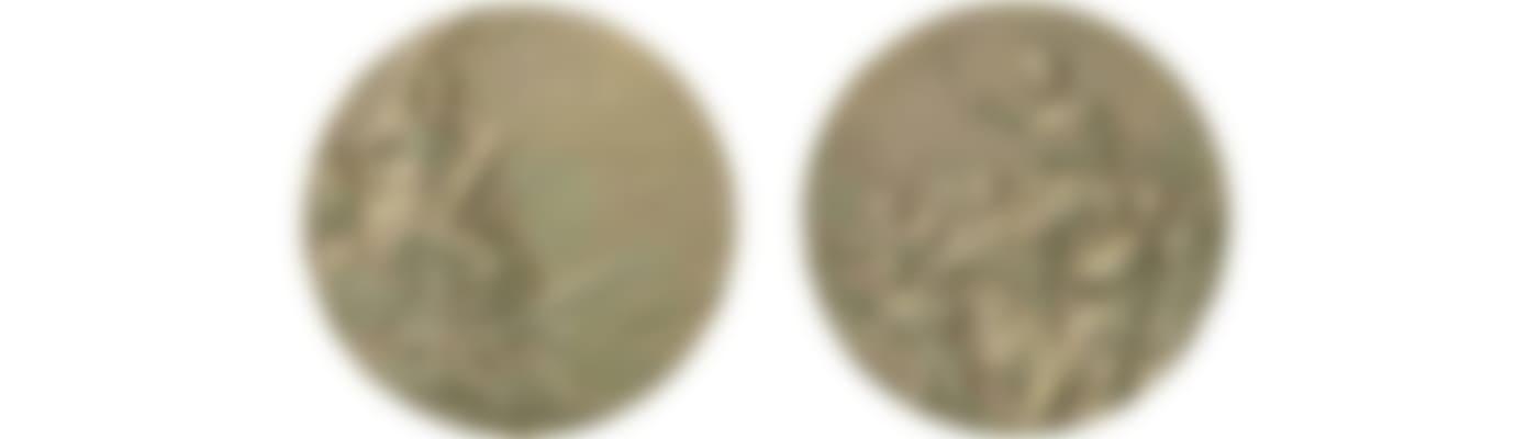 Berlin_1936_medal_big