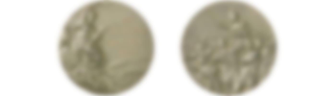 Helsinki_1952_medal_big