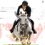 Equestrian analytics provide athletes with the necessary insight to improve