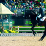 Live@Tryon | Day 13