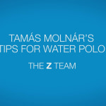 Tamas Molnar's tips for water polo