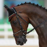 FEI Eventing Nations Cup – Millstreet