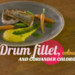 Drum fillet, coloured carrots and coriander chlorophyll