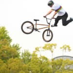 BMX Freestyle Park Pro Final | FISE European Series - Chateauroux