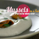 Mussels on a bed of potato mousse
