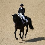 FEI World Breeding Championships for Young Horses - Ermelo