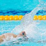 FINA 冠军游泳系列赛 - 布达佩斯