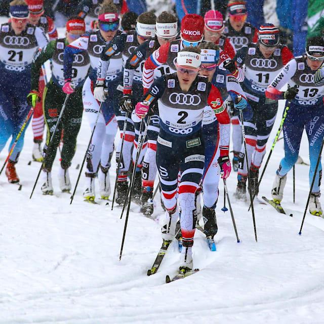 السرعة فرق رجال وسيدات   كأس العالم (FIS) - دريسدن