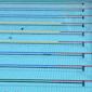 100m Papillon (H) - Natation | Replay d'Athènes 2004
