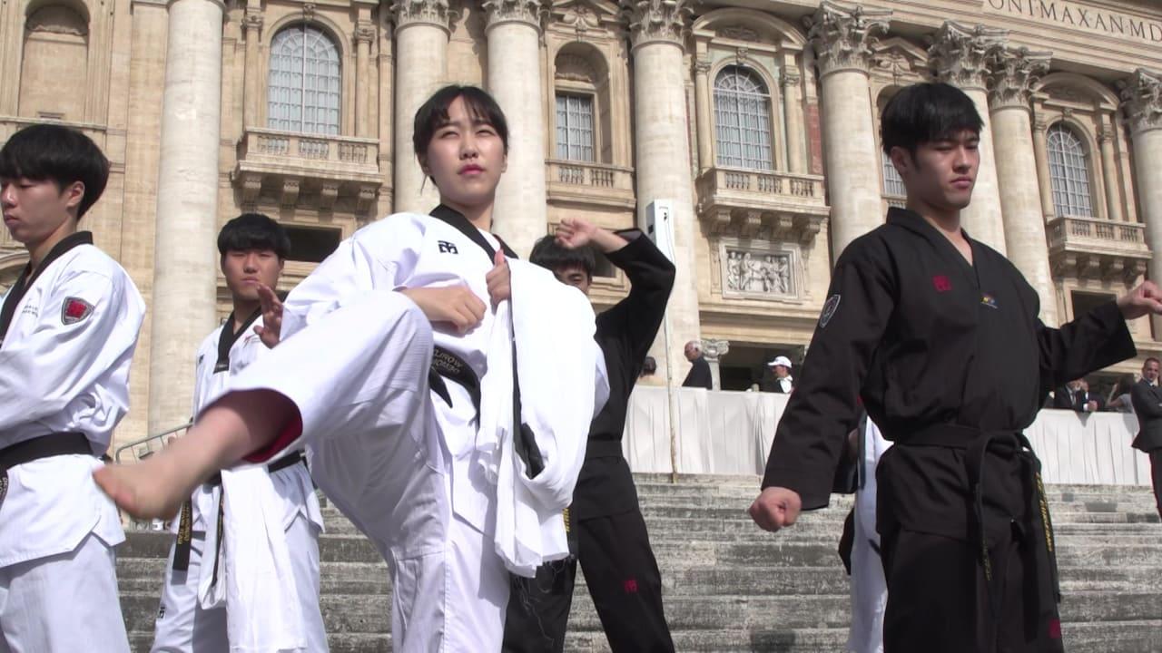 韓国選手がフランシスコ法王にテコンドーを披露