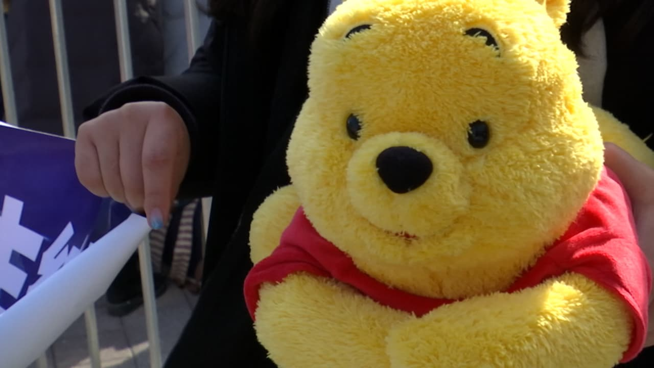 Winnie the Pooh is a good luck charm for an Olympic champion. Guess who?