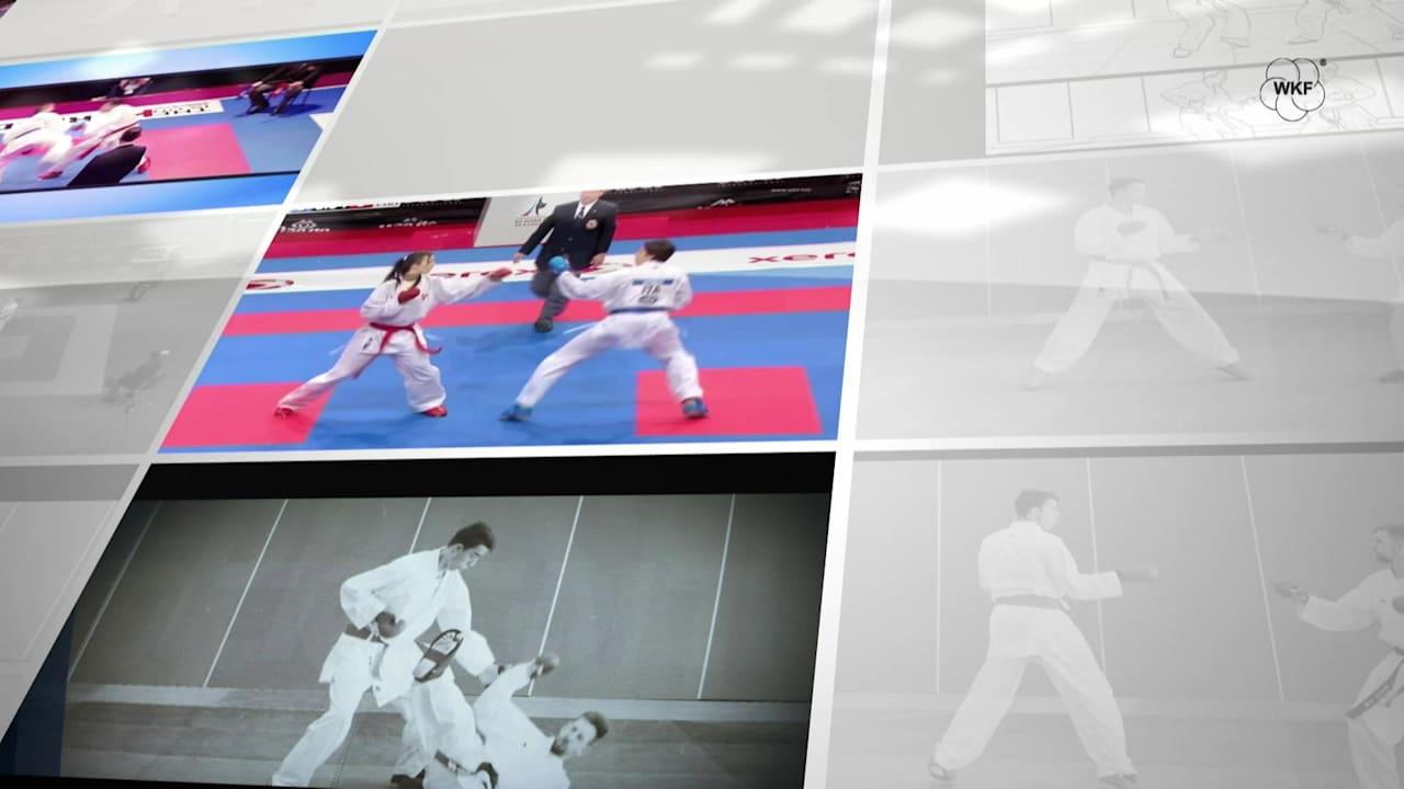 Karate Rules - Kumite