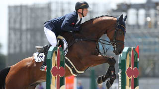 Equestrian Jumping