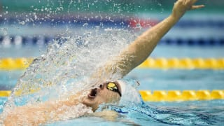 Day 3 - Heats | FINA World Championships - Hangzhou