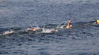 Men and Female Marathon Swimmers