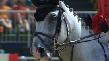 ترويض الخيول | FEI Eventing Nations Cup - ميلستريت