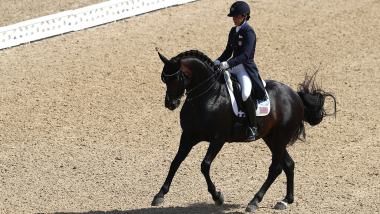決勝 7歳馬 | FEI World Breeding Dressage Championship - エルメロ