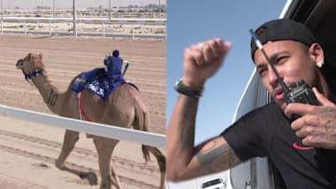 ネイマール、カタールでラクダレースに勝利