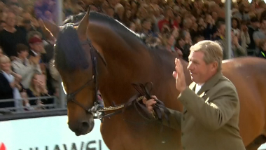 Double Olympic Champions Nick Skelton and Big Star celebrate retirement