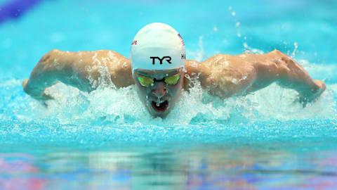 اليوم 8 - التصفيات | السباحة - بطولة العالم