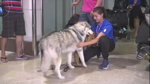 Four-legged friends greet World Champ Carolina Marin on her homecoming
