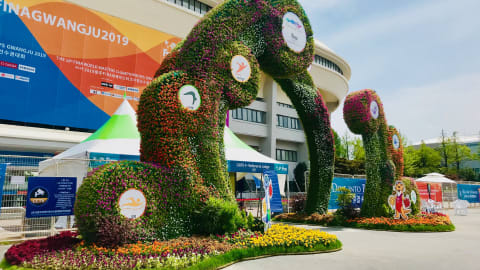 Top Six: The best aquatics topiary from Gwangju