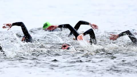 Men's Open Water 10km | Swimming - FINA World Championships - Gwangju