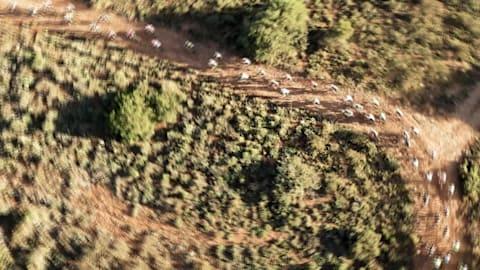 Herren Rennen Wiederholung | 2018 Absa Cape Epic