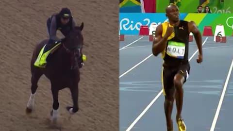 Bolt targets Kentucky Derby glory
