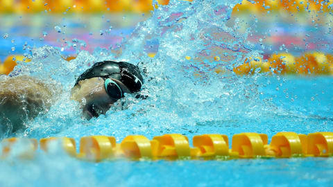 FINA World Championships 2019   As it happened: Day 16 as Dressel and Ledecky claim gold