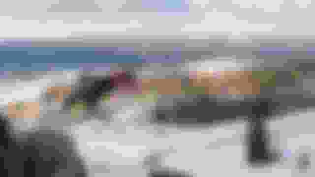 فردي سيدات ورجال - حصاد - القفز التزلجي   ألعاب الشباب 2020