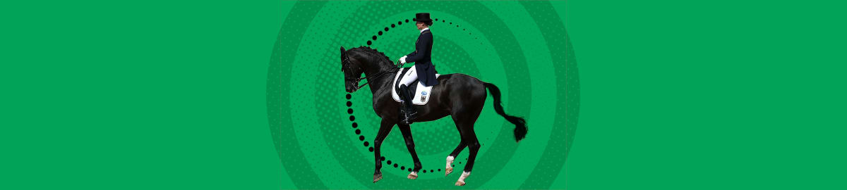 Sports équestres - dressage
