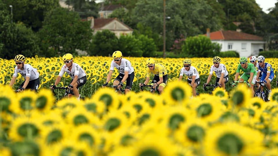 美しい自然の中を走るのが自転車ロードレースの魅力のひとつ